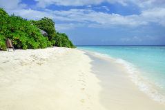 Tropical Maldivian island in Indian ocean Royalty Free Stock Image