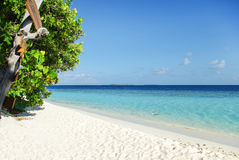 Tropical Maldivian island in Indian ocean Stock Photo