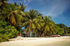 Tropical Maldivian resort beach side. Maldivian island resort with white sandy beach and lush tropical vegetation of the coconut palms Royalty Free Stock Images