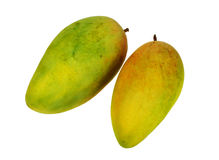Tropical mango fruit isolated on white background Stock Image