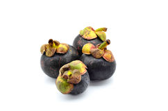Tropical mangosteen fruit Royalty Free Stock Photo