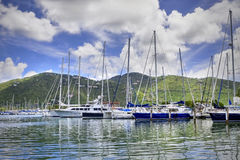 Tropical marina. Beautiful marina lined with luxury sailboats and large lush mountains in the background Royalty Free Stock Photos