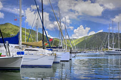 Tropical marina. Beautiful tropical marina lined with luxurious sailboats and lush green mountains in the background Stock Image