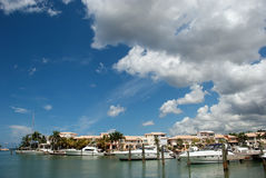 Tropical marina and yachts Stock Images