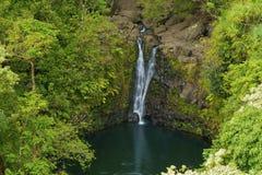 Tropical Maui Waterfall. A beautiful triple waterfall on the road to hana on the hawaiian island of maui Stock Image