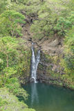Tropical Maui Waterfall Royalty Free Stock Photos