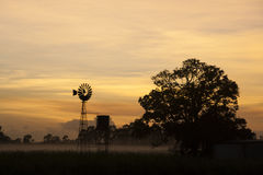 Tropical misty dawn with windmill. Pearly misty dawn in the tropics with windmill and trees silhouettes Royalty Free Stock Photos