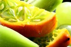 Tropical mix Stock Photos