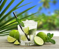 Tropical mojito Stock Image