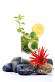 Tropical mojito drink royalty free stock images