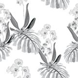 Tropical monstera leaves and orchid flowers seamless pattern in black and white style. Beach wallpaper royalty free illustration