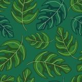 Tropical Monstera Leaves Seamless Repeat Pattern . Exotic Plant Stock Photography