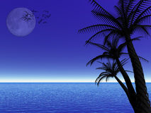 Tropical moon night Royalty Free Stock Images