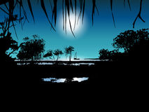 Tropical moon night on the sea shore. Vector illustration of tropical moon night on the sea shore with mangrove trees Stock Photography