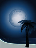 Tropical moonlight Royalty Free Stock Image