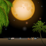 Tropical moonlight over sandy beach Stock Images