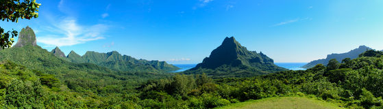 Tropical Moorea panorama Royalty Free Stock Images