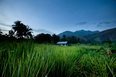 Tropical Mountain Hut Royalty Free Stock Photography