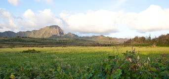 Tropical Mountain Landscape. Tropical paradise with tall mountains and meadow in hawaii Royalty Free Stock Images