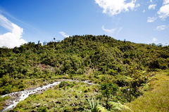 Tropical Mountain Landscape Royalty Free Stock Images