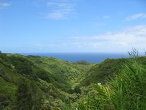 Tropical Mountains. On the way to Hana with the ocean in the background Royalty Free Stock Photos