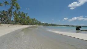 Tropical and natural Caribbean beach near samana stock video