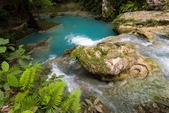 Tropical natural pool Stock Image