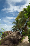 Tropical nature. Coast of the tropical island. Palms, stones and blue sky Royalty Free Stock Image