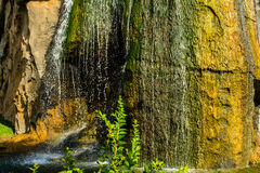 Tropical nature with water running vertically on rocks. Tropical nature with water running vertically on greenish and yellowish rocks, on bright summer day royalty free stock photography