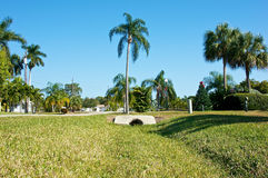 Tropical neighborhood. Low angle view of a tropical neighborhood in southwest florida. The streets are lined with palm trees, foreground is all grass Stock Photography