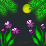 Tropical Night Royalty Free Stock Photo