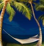 Tropical Night Sky Stock Photography