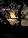 Tropical nublado Fotos de archivo