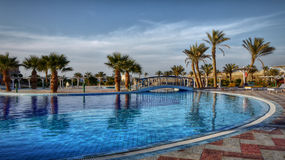 Tropical oasis - Luxury - Hotel Resort - Egypt. Egyptian tropical oasis - a beautiful swimming pool with a background of tall palm trees. Luxury Hotel Complex royalty free stock photos