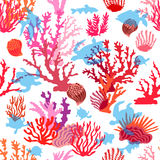 Tropical ocean corals. Royalty Free Stock Photography