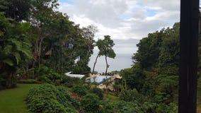 Tropical. Ocean plants pool costarica paradise royalty free stock photo