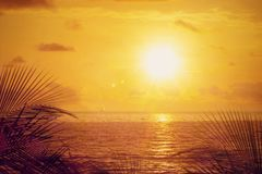 Sunset mood at the ocean background Stock Images
