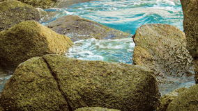 Tropical ocean shore with large stones stock footage