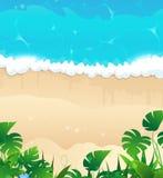 Tropical ocean shore Stock Photos