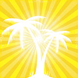 Tropical orange sunny ray beam silhouetted trees. Stock Image