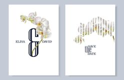 Free Tropical Orchid Flower Wedding Cards On White Stock Photos - 169795573