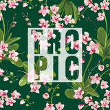 Tropical Orchid Flowers Background. Graphic Tshirt Design Royalty Free Stock Images