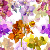 Tropical orchid flowers. Repeating floral pattern. Water color Royalty Free Stock Photos