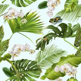 Tropical orchid frog pattern. Vector botanical seamless pattern with tropical leaves, orchid flowers and little frog on blue. Background design for cosmetics stock illustration