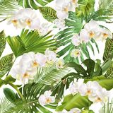 Tropical orchid leave pattern. Vector botanical seamless pattern with tropical leaves, orchid flowers on white. Background design for cosmetics, spa, wedding stock illustration