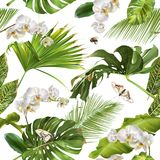 Tropical orchid white pattern Royalty Free Stock Photos