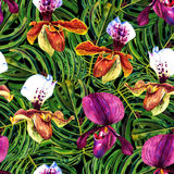 Tropical orchids and monstera pattern royalty free illustration