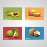 Tropical Organic Fruits Cards Royalty Free Stock Photos