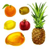 Tropical organic fruits collection Royalty Free Stock Photography