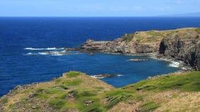 Tropical Pacific Coast (Maui, Hawaii) stock video footage